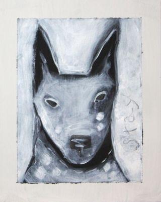 Staydog