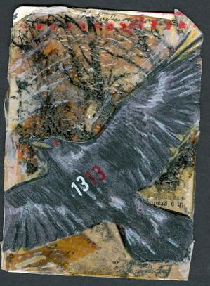 Crow1313